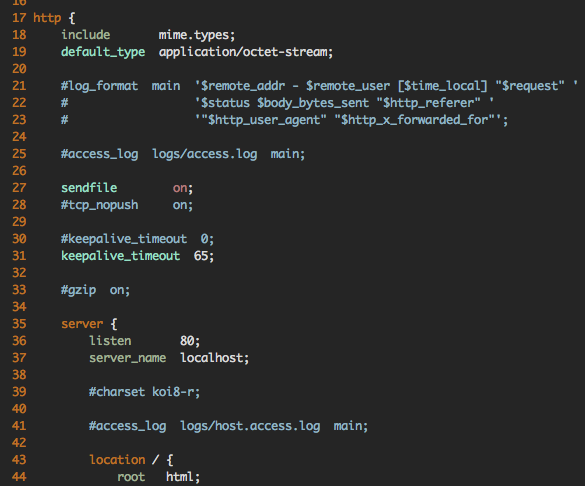Screenshot of VIM with syntax highlighting in an Nginx config file